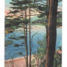 PA A Lake Among The Coal Mines Reading Anthracite Region Pottsville Vintage Linen Postcard