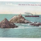 CA San Francisco Seal Rocks at Cliff House Steamer Ship Newman Vintage Postcard