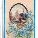 Best Wishes Winter Cottage Scene forget Me Nots Vintage Litho Embossed Greetings Postcard