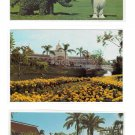 3 Walt Disney World Postcards Dumbo Topiary Crystal Palace Restaurant Polynesian Village