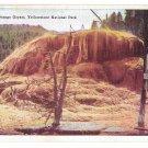 WY Yellowstone National Park Orange Geyser Vtg H H Tammen Wyoming Postcard