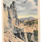 WY Yellowstone National Park Osprey Aerie Vtg Haynes Wyoming Postcard