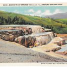 WY Yellowstone National Park Mammoth Hot Springs Terraces Vtg Haynes Wyoming Postcard