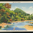 Doubletop Mountain and Sourdnahunk Stream Maine American Art Linen Postcard