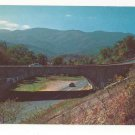 NC Blue Ridge Parkway Mt Mitchell Buck Creek Gap Vtg Chrome Highway Postcard