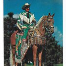 Singing Cowboy Actor Art Miller with His Horse Peavines Golden Major Vintage Postcard