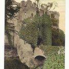 UK Warwickshire England Warwick Castle  Ivy Covered Moat Entrance Gate Vtg Postcard