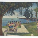 Tampa Clearwater FL Courtney Campbell Parkway Picnic 1954 Curteich Linen Postcard