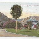 CA Santa Catalina Island Descanso Canyon Vintage California Postcard