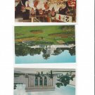San Francisco CA Fishermans Wharf Conservatory Aquarium 3 Different Vintage Postcards