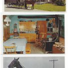 Lancaster PA Amish Farm and House Family Horse and Buggy 3 James Hess Postcards