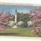 Valley Forge PA New Jersey Monument Dogwood Blossoms Vtg Curteich Linen Postcard