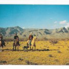 Horseback Riding Out West Cowboy with Dog Desert in Bloom 1950s Vintage Texas Postcard