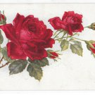 Beautiful Thorny Stem of Red Roses with Buds Vintage Flower Postcard