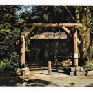 Gateway Muir Woods National Monument Redwoods Mill Valley CA Vntg Gray Line Tours Postcard