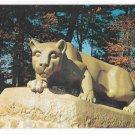 PA Nittany Lion Shrine Penn State College Vintage Pennsylvania University Postcard