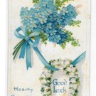 Greetings Good Luck Horseshoe Forget Me Not Flowes Embossed Vintage Winsch Back Postcard