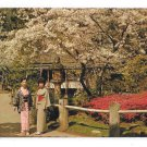 Golden Gate Park San Francisco CA Japanese Tea Garden Vintage Gray Line Postcard