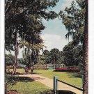 Glass Bottom Boats on Silver River Silver Springs FL Vintage Postcard