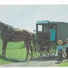 Amish Family Children Horse and Buggy Lancaster PA Vntg Postcard Vincent Tortora Photographer
