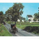 phrata PA Amish Family Returning from Church Horse Buggy Lancaster Co Vintage Postcard
