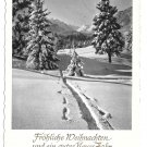RPPC Frohliche Weinachten Christmas Path in Snow Mountains Germany 4X6 HORN Postcard