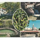 Greece Rhodes Valley of the Butterflies Multiview Vtg 4X6 Postcard