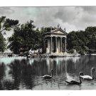 Italy Rome Villa Borghese Laghetto Park Pond Swans Glossy Tinted 4X6 Photo Postcard