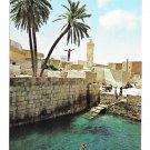 Gafsa Tunisia Roman Swimming Pool Vtg Kahia Tunis Postcard 4X6