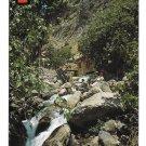 Morocco Chaouen Ras El Ma Waterfall Spring Source of Rasaelma River 4X6 FISA Postcard
