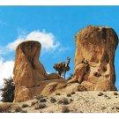 North Africa Morocco Dromedary Camel in the Tafraout Granite Rockies ITTAH 4X6 Postcard