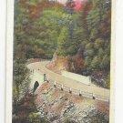 MA Mohawk Trail Cold River Bridge Vtg Tichnor Postcard ca 1941