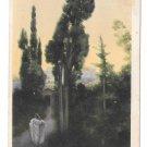 Quo Vadis No 12 Henryk Sienkiewicz Vinicius und Lygia Rommel Collotype 1913 Postcard