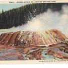 WY Yellowstone Park Sponge Geyser Wyoming 1940 Haynes Linen Postcard