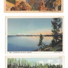 WY Yellowstone Park Lake Grand Canyon Punch Bowl Spring 3 Vntg Haynes Linen Postcards