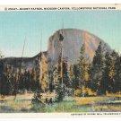 WY Yellowstone Park Mount Haynes Madison River Canyon Vtg Linen Postcard Wyoming