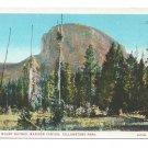 WY Yellowstone National Park Madison Canyon Mount Haynes Vntg White Border Postcard
