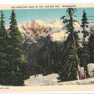 WA Cascade Mountains Vista Vtg C P Johnson Linen Postcard Washington State