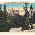 WA Cascade Mountains Vista C P Johnson Used 1942 Linen Postcard Washington State