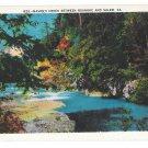 Virginia Mason's Creek Between Roanoke and Salem Vintage Asheville Postcard Co
