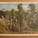 Vintage Hairpin Curve On Needles Highway Custer State Park Black Hills South Dakota Postcard