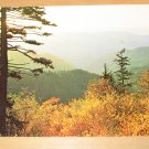 Vintage Fall Color Scene Appalachian Mountains Postcard