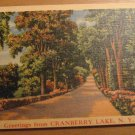 Vintage Greetings From Cranberry Lake New York Postcard