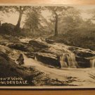 Vintage Swallows Wood Longdendale UK Postcard