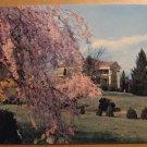 Vintage Royal Oaks Boxwood Farms Marion VA Postcard