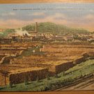 Vintage Champion Paper And Fiber Company Canton NC Postcard