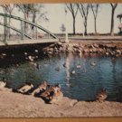 Vintage Lakeside Park Zoo Fond Du Lac Wisconsin Postcard