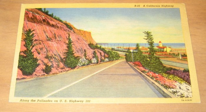 Vintage Along The Palisades California Postcard