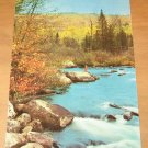 Vintage White Water & And Autumn Forest Postcard