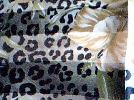 Green Cheetah Print with Gold Flowers Scarf